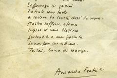 11g frac poesia anna