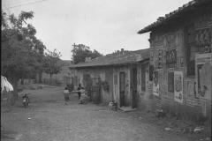 1953-vallerano-trullo3.jpg