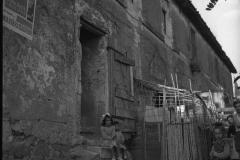 1959-borgata-laurentina-collina-volpi10.jpg