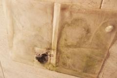 19)collocato a coprire decorazioni delle pareti del bagno,altezza vasca