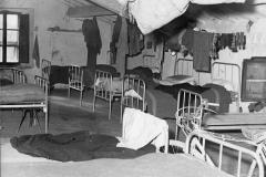 15 Avanti! Archivio fotografico. 5 dic. 1953.Toscana-Maremma.. Queste condizione vivono ancora molti assegnatari.