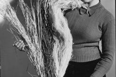 3 archivio fotografico dell'agricoltura