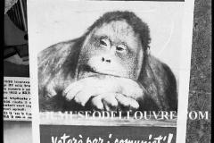 A7-985.Roma-maggio-1953Manifesti-in-lotta-ovvero-aspetti-della-propaganda-elettorale-per-le-politiche-del-7-giugno-1953jpg-1