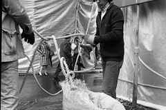 V. Biffani Christo The Wall, wrapped Roman Wall via Veneto & villa Borghese, Rome 26 gennaio 1974-7