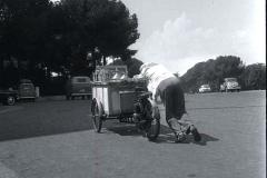 1959 15 agosto Il gelataio