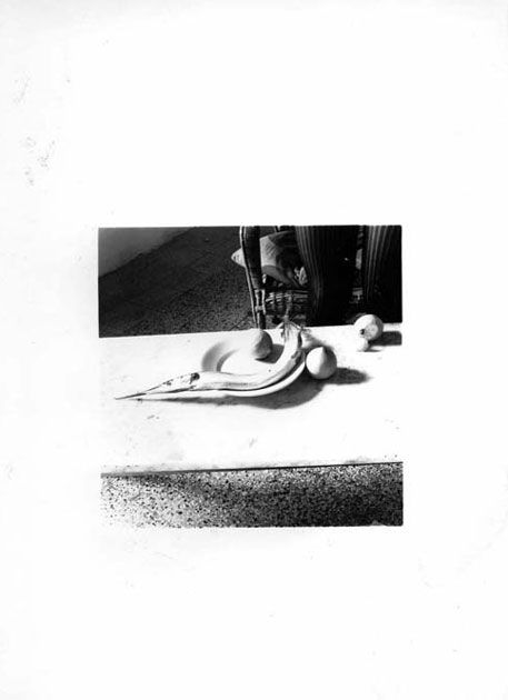 "Francesca Woodman ""Fish calendar – 6 days"" (# 2). Roma, novembre 1977"